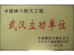 武汉市委、市人民政府表彰